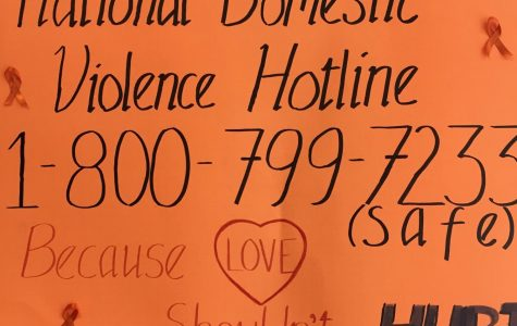 Domestic Violence Can be Stopped!