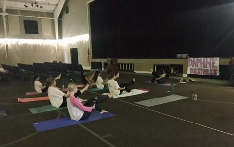 Yoga, Light of the Soul